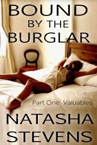 burglar.august2014
