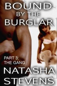 burglar3