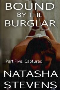 burglar5
