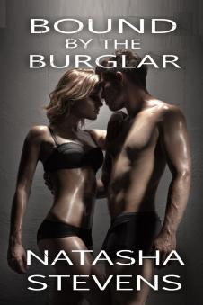 burglar2016createspace